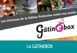 gatinebox