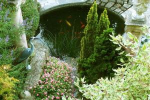 Une source naturelle alimente le bassin pour le bonheur des poissons