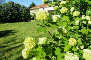 Dès le printemps, le jardin offre de magnifiques bouquets de fleurs parfumées.