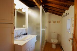 Salle d'eau avec douche, vasque et WC