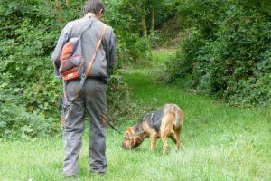 Découvert du travail du chien de recherche de personne disparue
