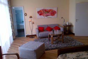 Les Fifties: Chambre en rez-de-chaussée avec une grande terrasse privative. Le canapé convertible offre 1 ou 2 couchages confortables